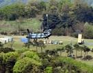 Trung Quốc đòi Mỹ - Hàn dừng triển khai THAAD ngay tức thì