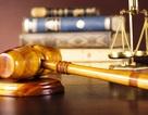 Vụ thẩm phán dùng bằng giả: Xem xét lại những bản án đã xử?