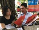 An Giang: Chợ không phép vẫn hoạt động, chính quyền phớt lờ?