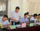 Chính thức kiểm tra các dự án liên quan đến rừng tại Phú Yên