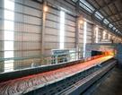 Thép Hòa Phát tiêu thụ 178.000 tấn trong tháng 5