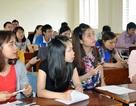 """Chủ tịch tỉnh Hà Tĩnh """"lệnh"""" dừng ngay việc hợp đồng lao động không qua tuyển dụng"""