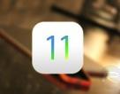 Những thiết bị nào  được nâng cấp lên phiên bản iOS 11 mới nhất?