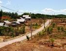 Thiếu đất sản xuất, dân tái định cư khốn khó đủ đường