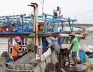 """Nan giải """"bài toán"""" thiếu lao động  làm nghề biển"""