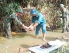 Phát hiện hơn 500 quả lựu đạn khi mò hến trong khe suối