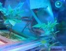 Nước tiểu giúp phi hành gia trồng cây lương thực trong không gian như thế nào?