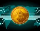 """Bitcoin tụt dốc, gà mờ """"ngã sấp mặt"""", cảnh báo hệ luỵ đầu cơ tiền ảo"""
