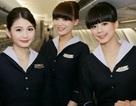 Cụ ông 70 tuổi đá nữ tiếp viên hàng không khi được yêu cầu thắt dây an toàn