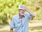 Bệnh tiểu đường, huyết áp cao dẫn tới sa sút trí tuệ