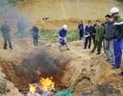 Lào Cai: Bắt giữ và tiêu hủy hơn 1,3 tấn cá tầm nhập lậu từ Trung Quốc