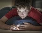Bé trai 5 tuổi bị cảnh sát thẩm vấn vì... gửi ảnh sex qua mạng xã hội