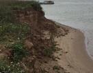 """Hà Nam: Dân """"kêu trời"""" vì cát tặc lộng hành trên sông Hồng"""