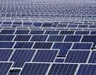 Đầu tư nhà máy điện mặt trời hơn 800 tỷ đồng
