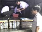 Bắt xe tải chở hơn 400 ký tôm có chứa tạp chất