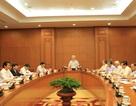 Tổng Bí thư: Tập trung truy bắt, dẫn độ Trịnh Xuân Thanh về nước