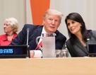 Mỹ cắt giảm 285 triệu USD ngân sách cho Liên Hợp Quốc