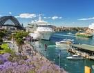 Ưu đãi hấp dẫn khi tham dự triển lãm du học các trường ĐH hạng nhất nước Úc và thế giới