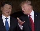 """Truyền thông  Trung Quốc nói ông Trump """"đầu độc"""" quan hệ song phương"""