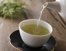 """5 loại trà giúp """"tiêu"""" mỡ"""