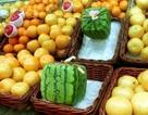 """Thực khách chi hàng ngàn USD mua trái cây """"siêu phẩm"""""""