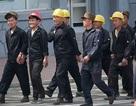 Cách Triều Tiên kiếm hàng chục triệu USD từ châu Phi