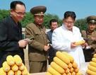 """""""Giải mã"""" đội ngũ ghi chép vây quanh nhà lãnh đạo Kim Jong-un"""