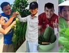 Vườn rau xanh đáng ngưỡng mộ của những ông bố đảm trong showbiz Việt