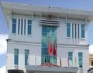 Kỷ luật Chủ tịch và Phó Chủ tịch Liên minh HTX bị tố quan hệ bất chính