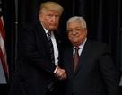 """Tổng thống Trump hứa """"làm tất cả"""" vì hòa bình Trung Đông"""