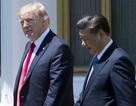 """Sóng gió trong quan hệ Mỹ-Trung sau thời kỳ """"trăng mật"""""""