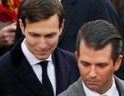 Báo Mỹ: Các con ông Trump từng gặp luật sư Nga trong thời gian bầu cử