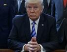 Tổng thống Trump họp bàn với các nữ doanh nhân tại Nhà Trắng