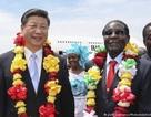 "Mổ xẻ ""quyền lực mềm"" của Trung Quốc ở Zimbabwe"