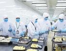 Công nghệ kỹ thuật chế biến và bảo quản thực phẩm - Ngành học dẫn lối thành công