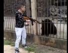 Phẫn nộ cảnh du khách Trung Quốc giương súng bắn chết gấu đen