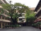 Đề án tuyển sinh năm 2018 của trường ĐH Khoa học Tự nhiên TPHCM