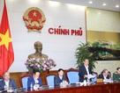 Phó Thủ tướng: Lập 4 đoàn giám sát việc chi tiền bồi thường vụ Formosa