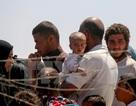 Liên quân không kích IS tại Syria, hàng chục dân thường thiệt mạng