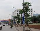 Quảng Ninh thu phí... dừng đỗ xe