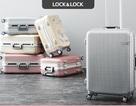 Những bộ sưu tập LOCK&LOCK không nên bỏ lỡ trong dịp hè năm nay