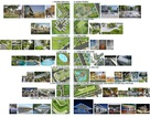 Tập đoàn FLC: Định nghĩa lại quy trình quy hoạch phát triển đô thị