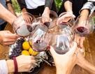 Tác động khác nhau từ các loại rượu