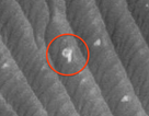 Người ngoài hành tinh đã chiếm đóng được Sao Hỏa?