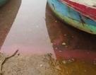 Lại xuất hiện dải nước đỏ dài 30m, kéo loang trên biển