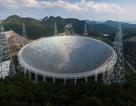 Trung Quốc không tìm được người vận hành kính thiên văn khổng lồ
