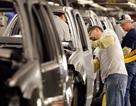 Cánh cửa vào Mỹ ngày càng hẹp với người lao động