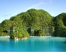 Xu thế nghỉ dưỡng mới: Biệt thự kiến trúc rừng trên không bên bờ biển