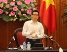 Phó Thủ tướng: Chưa triển khai quy hoạch bán đảo Sơn Trà trong 3 tháng tới