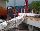 Tảng đá 2 tấn tuột dây cáp đè một người tử vong